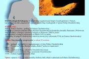 Bieg górski na Wołowiec i Rakoń - 29 września