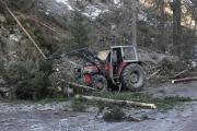 Trwa usuwanie powalonych drzew w dolinie Chochołowskiej